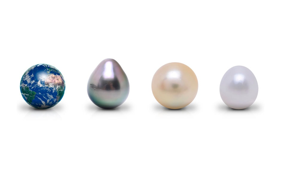 Pearl Training